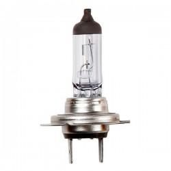 Halogen Bulbs 12V 55W H7 Px26d H7 Headlamp Long Life-20