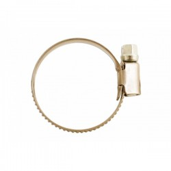 Hose Clips S/S 12-20mm Pack of 10-10