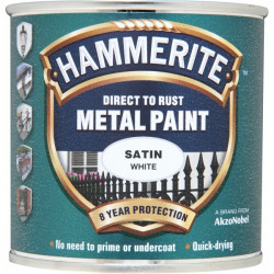 Direct To Rust Metal Paint Satin White 250ml-10