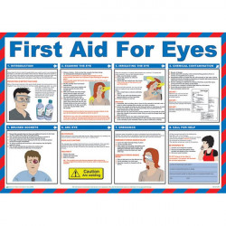 First Aid For Eyes Poster 59cm x 42cm-10
