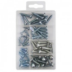 Self Tapping Screw Assorted Pack of 60-10