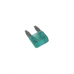 Fuses Mini Blade 30A Pack Of 2-10