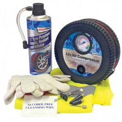 Tyre Sealer Kit with Compressor-10
