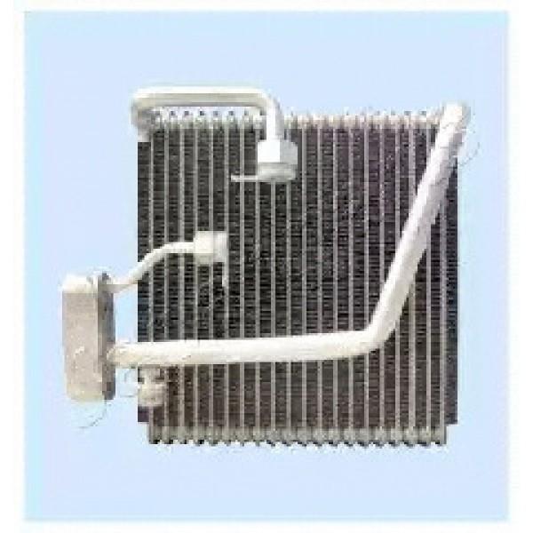 Air Conditioning Evaporator WCPEVP1930005-00