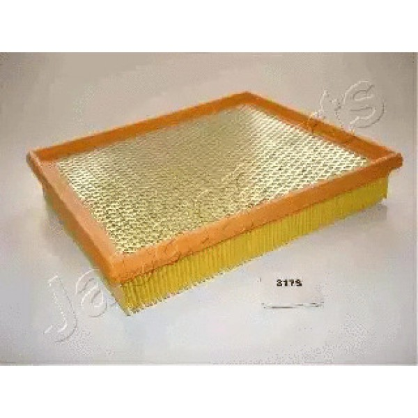 Air Filter WCPFA-317S-00