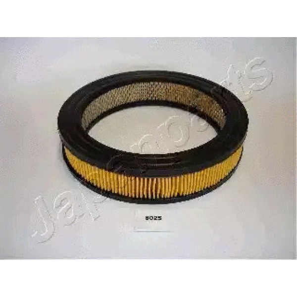 Air Filter WCPFA-602S-00
